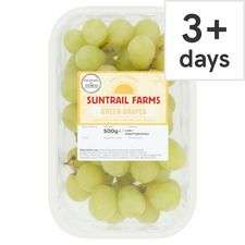 Suntrail Farms Green Grapes 500G - £0.79 Clubcard price @ Tesco