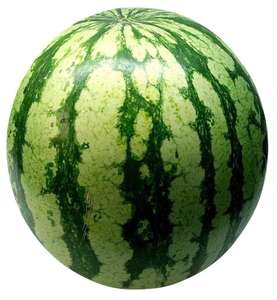 Grower's Selection Giant Watermelon £3 (Minimum Basket / Delivery Fee Applies) at Asda