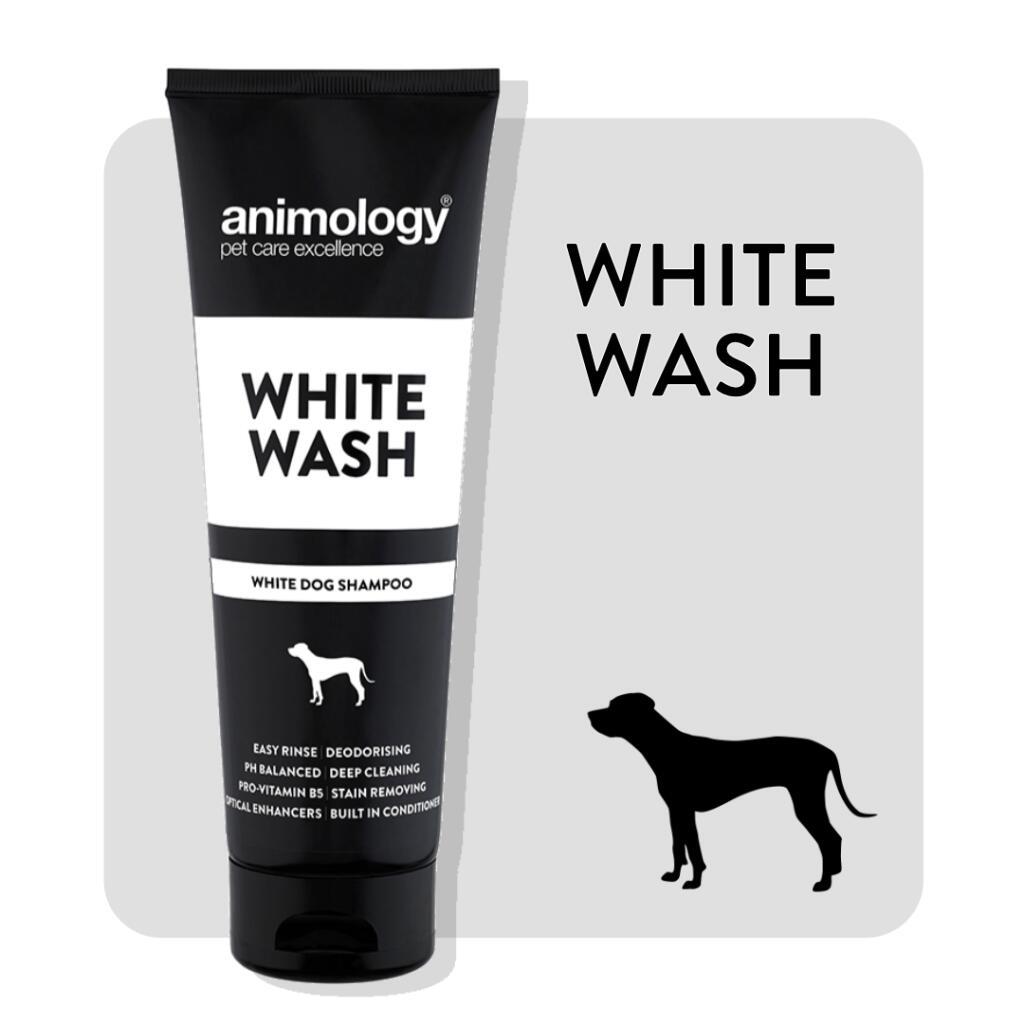 Animology White Wash White Dog Shampoo 250ml - £3.62 (or £3.26 with S&S) (+ £4.49 Non-Prime) @ Amazon