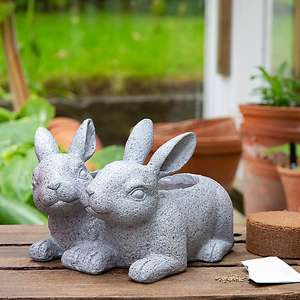 Grow Your Own Flowers with Duo of Rabbits Planter (includes peat-free soil pellets and bulbs) £7 Click & Collect @ Dunlem