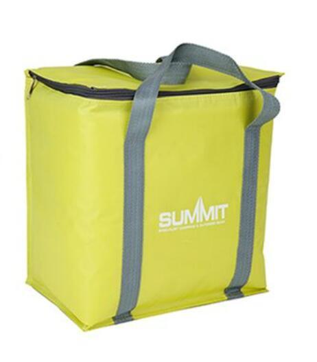 Summit Coolbag 12.5L £3.00 Clubcard Price @ Tesco