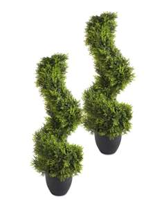 2 spiral topiary plants for £49.98 + £3.95 Delivery @ Aldi