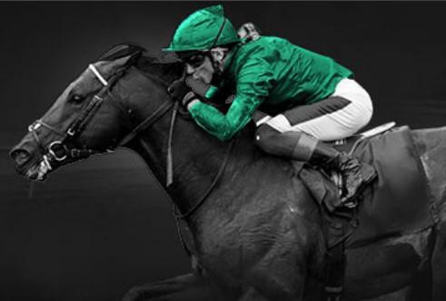 Royal Ascot FREE £5 Bet @ Bet365 (selected accounts)
