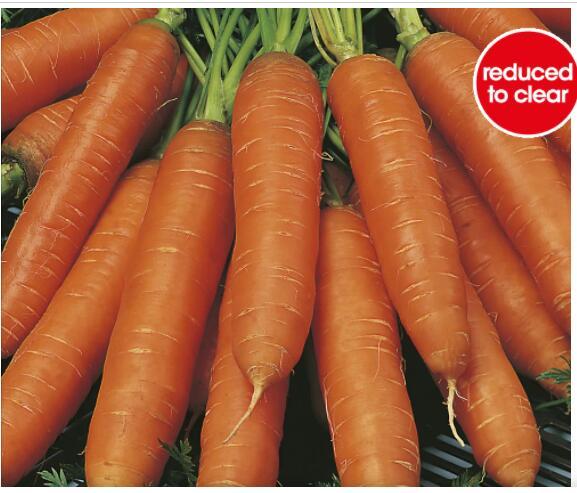 Half Price Seeds E.G Johnsons cabbage seeds 75p / Lettuce 50p @ Wilko Instore