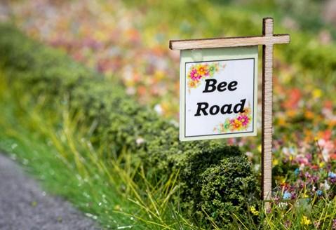 Free Pollinator Friendly Flower Seeds from Arla