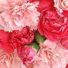 Carnation Classic Flowers - £9.98 delivered + 250 Tesco clubcard points