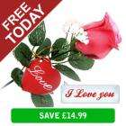 FREE incl. delivery Record-Your-Message Talking Rose @ Ministry Of Deals