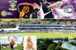 £5 instead of £15 to watch live cricket this summer, including a family fun day with Twenty20 cricket on July 18th, with Durham County Cricket Club - Save 67% with Groupon (Mycitydeals)