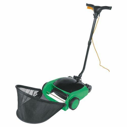 Lawn Raker 650W - Tesco Direct £28.13 !!