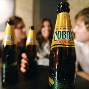 12 Bottles of Cobra beer for £8 @ Somerfield