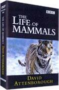 The Life of Mammals Box Set (DVD) (4 Disc) - £5.99 @ Bee