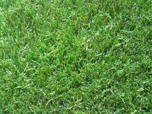 20mm 3 Tone Artificial Grass Was £16.99 now £11.99 @ Real Life Grass