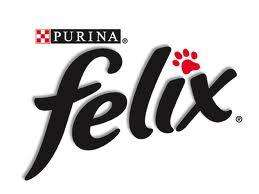 FREE felix kitten pack - has cat toy and 3 full size  food samples