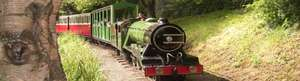 Family Train Ride, Boating and Water Chute Day Out for £9 at North Bay Railway(Scarborough) (£23.70 Value)