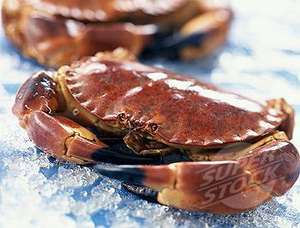 Fresh Whole Orkney Crab, are Half Price at Only £2.50 each .instore @ Tesco