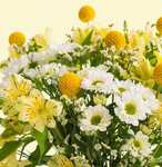 Flower Bouquets from £10.00 delivered using code @ Bloom and Wild (Teacher Gifts?)